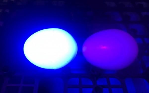 links mit, rechts ohne UV-Beschicchtung